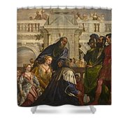 The Family Of Darius Before Alexander Shower Curtain