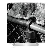 The Fence Eating Tree Shower Curtain