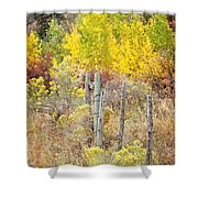 The Fence Line Shower Curtain