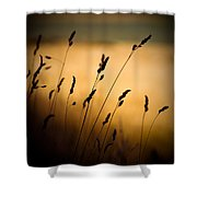 The Field Shower Curtain