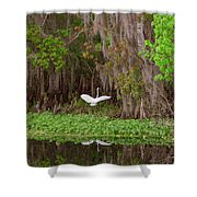 The Fight 1 Shower Curtain