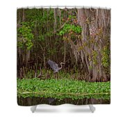 The Fight 5 Shower Curtain
