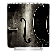 The Figure Of A Cello Shower Curtain