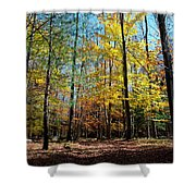 The Final Days Of Autumn Color Shower Curtain