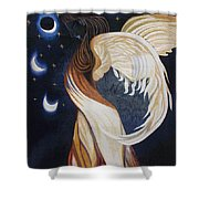 The Final Eclipse Before The Millenium Hand Embroidery  Shower Curtain