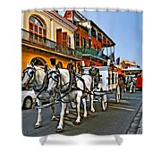 The Final Ride II Shower Curtain