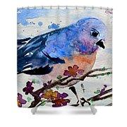 The First Bluebird Shower Curtain