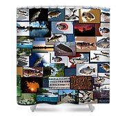 The Fishing Hole Collage Rectangle Shower Curtain
