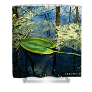 The Floating Leaf Of A Water Lily Shower Curtain