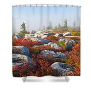 The Fog Clears At Dolly Sods Shower Curtain