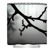 The Foggiest Idea Shower Curtain