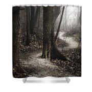 The Foggy Path Shower Curtain by Scott Norris