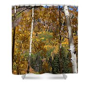 The Forest For The Trees Shower Curtain