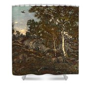 The Forest Of Fontainebleau Shower Curtain