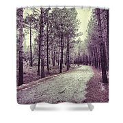 The Forest Road Retro Shower Curtain