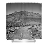 The Forever Road Shower Curtain