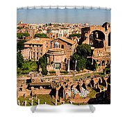 The Forum From The Palatine Shower Curtain