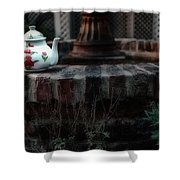 The Fountain And The Teapot Shower Curtain