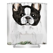 The Frenchton Shower Curtain by Maria Urso
