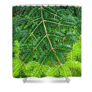 The Freshness Of New Growth Is A Thing Of Beauty And Wonder Shower Curtain