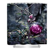 The Friday The 13th Rose Shower Curtain