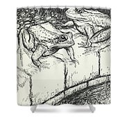 The Frogs And The Well Shower Curtain