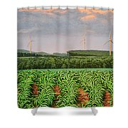 The Front Shower Curtain