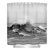 The Fury Shower Curtain