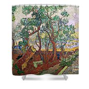 The Garden Of St Pauls Hospital At St. Remy Shower Curtain by Vincent Van Gogh