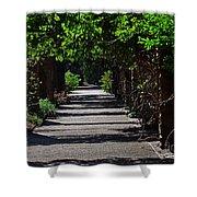 The Garden Pathway 2 Shower Curtain
