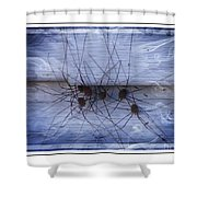 The Gathering - Long Leg Spiders Shower Curtain