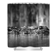 The Gator Shower Curtain