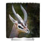 The Gerenuk Shower Curtain