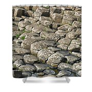 The Giant Causeways Shower Curtain