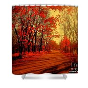 The Ginger Path Shower Curtain