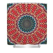 The Girl With Kaliedoscope Eyes Shower Curtain