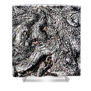 The Gnarled Old Tree Shower Curtain