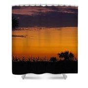 The Gold Coast Shower Curtain