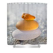 The Golden Egg Shower Curtain by Barbara McMahon