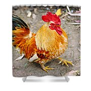 The Golden Rooster Shower Curtain