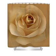 The Golden Rose Flower Shower Curtain