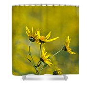 The Golden Wildflowers Shower Curtain