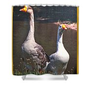 The Goose And The Gander Shower Curtain