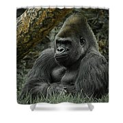 The Gorilla 3 Shower Curtain