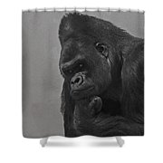 The Gorilla Shower Curtain