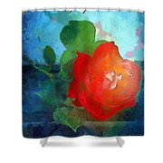 The Grace Of God Shower Curtain