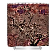 The Grand Canyon Viii Shower Curtain