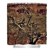 The Grand Canyon Vintage Americana V Shower Curtain