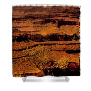 The Grand Canyon Vintage Americana Vi Shower Curtain