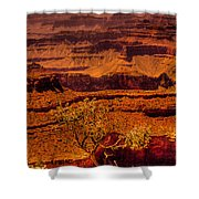 The Grand Canyon X Shower Curtain
